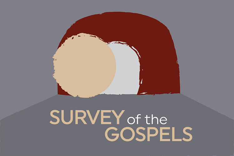 Survey of the Gospels